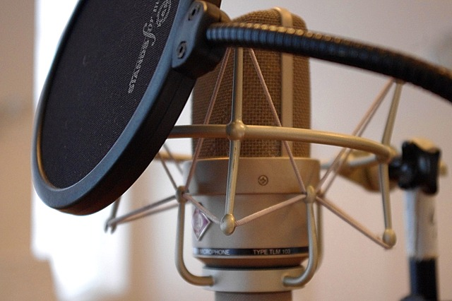 How Do Pop Filters Operate