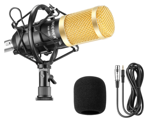 Neewer NW-800 - Best For Microphone Shock Mount