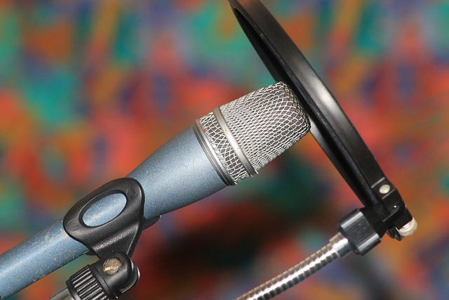 The Main Use Of Pop Filters
